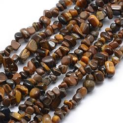 Chapelets de perles d'œil de tigre naturel, puce, 5~8mm, Trou: 1mm; Environ 33'' (84cm)(G-P332-45)