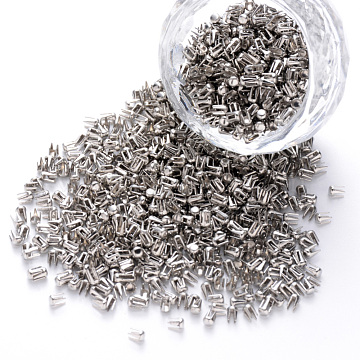 Steel Four Claw Nail, Steel Rivets, for Round Pearl Setting Machine, Stainless Steel Color, 3x2mm; about 45000pcs/1000g(FIND-Q085-001)