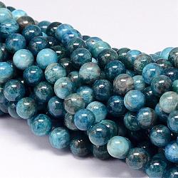 """Chapelets de perles en apatite naturelle, rond, 8mm, trou: 1mm; environ 50 pcs/chapelet, 15.7""""(G-P132-04-8mm)"""
