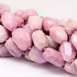"""Chapelets de perles en kunzite naturelle, facette, nuggets, 18~28x14~20mm, trou: 1mm; environ 16 pcs/chapelet, 15.7""""(G-P134-04)"""