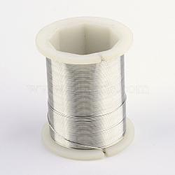 Fil de bijoux en cuivre, argenterie, 26 jauge, 0.4 mm; 30 m / rouleau(CWIR-R004-0.4mm-01)