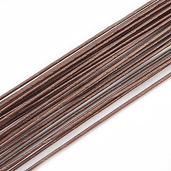 Iron Wire, CoconutBrown, 22 Gauge, 0.6mm; 80cm/strand; 50strand/bag(MW-S002-01B-0.6mm)