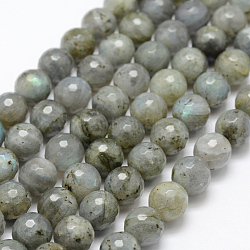 Natural Labradorite Beads Strands, Round, Faceted, 10mm, Hole: 1mm; about 39pcs/strand, 15.1''(38.5cm)
