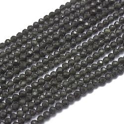 Perles en obsidienne naturelle, facette, rond, 2mm, trou: 0.5mm; environ 169 pcs/chapelet, 15.7'' (40 cm)(G-G792-36A)