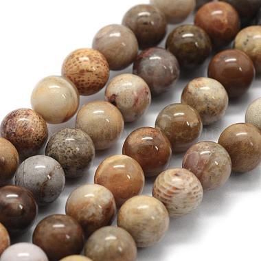 6mm Round Chrysanthemum Stone Beads
