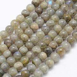 Natural Labradorite Beads Strands, Grade A-, Round, 10mm, Hole: 1mm; about 39pcs/strand, 15.3''(39cm)