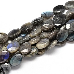Flat Oval Natural Labradorite Bead Strands, Faceted, 18x13x6mm, Hole: 1mm; about 21pcs/strand, 15.74inches