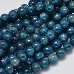 """Rondes apatite naturelle perles brins, Grade a, 6mm, trou: 1mm; environ 64 pcs/chapelet, 15.7""""(G-K068-04-6mm)"""