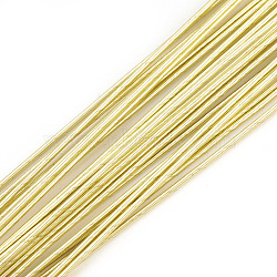 Iron Wire, LightKhaki, 18 Gauge, 1mm; 60cm/strand; 50strand/bag(MW-S002-02E-1.0mm)