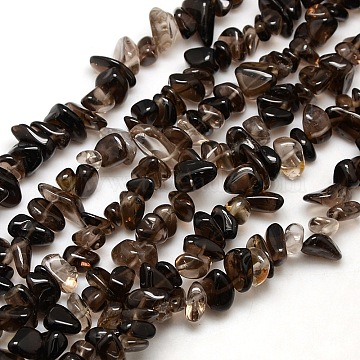 Chips Natural Smoky Quartz Beads Strands, 8~14x4~8x3~6mm, Hole: 1mm; about 15~16 inches(X-G-P030-03)