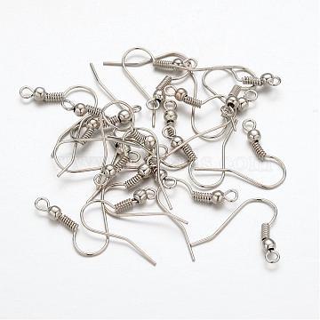 Platinum Iron Earring Hooks