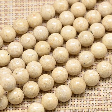 14mm Wheat Round Fossil Beads