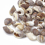 морские стеклянные бусы, нет отверстий / незавершенного, 8~14x5~10x5~7 mm; о 1420 шт / 500 г