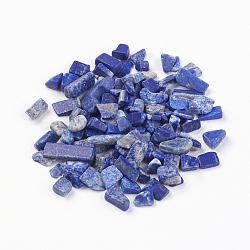 Perles en lapis-lazuli naturel, pas de trous / non percés, puces, 5~8x2~5 mm; environ 50 g / sac(G-J370-06)