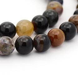 """Bois pétrifié naturel brins de perles rondes, 4mm, trou: 1mm; environ 98 pcs/chapelet, 15.7""""(G-P070-69-4mm)"""