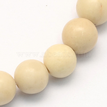 12mm Round Fossil Beads