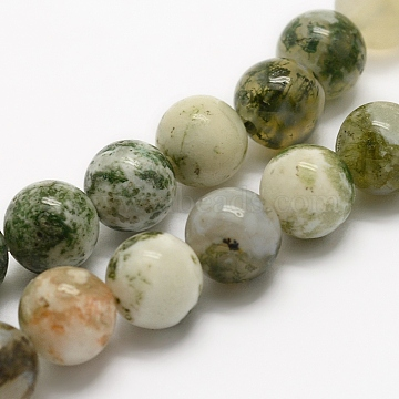 Natural Tree Agate Beads Strands, Round, 6mm, Hole: 1mm; about 62pcs/strand, 15.3 inches(39cm)(G-G735-02-6mm)