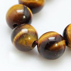 naturelles oeil de tigre brins de perles, arrondir, 14 mm, trou: 1~2 mm; environ 14 perle / brin, 8(X-G-C076-14mm-1B)