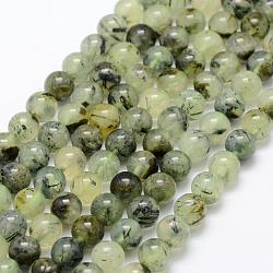 Chapelets de perles en préhnite naturelle, rond, grade AB, 8mm, trou: 1mm; environ 50 pcs/chapelet, 15.3'' (39 cm)
