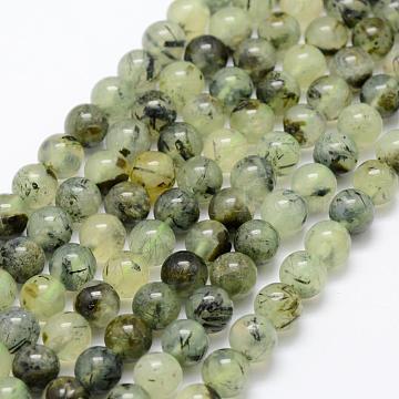 8mm Round Prehnite Beads