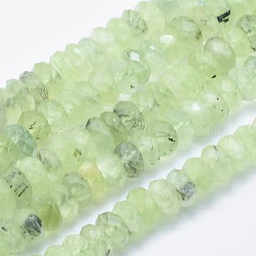 10mm Abacus Prehnite Beads