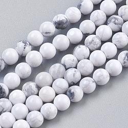 """Chapelets de perles en howlite naturelle, rond, blanc, 4mm, trou: 1mm; environ 41 pcs/chapelet, 7.6""""(X-TURQ-G091-4mm)"""