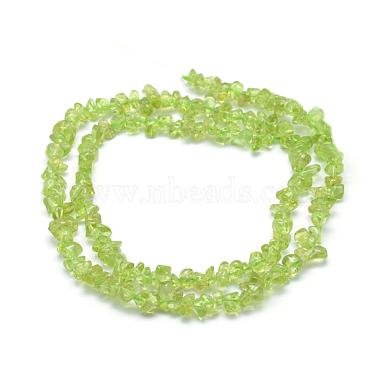 Natural Peridot Beads Strands(G-P406-11)-2