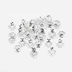 Iron Bead Caps, Flower, Cadmium Free & Lead Free, Multi-Petal, Silver Color Plated, 6x1mm, Hole: 1mm; about 1000pcs/20g(X-IFIN-R197-S)