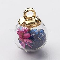 Pendentifs de boule en verre, avec des accessoires en plastique CCB, fleurs séchées au hasard et strass, darkblue, 20x15.5mm, Trou: 3.5mm(GLAA-N0020-02D)