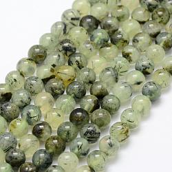 Chapelets de perles en préhnite naturelle, rond, grade AB, 6mm, trou: 1mm; environ 67 pcs/chapelet, 15.3'' (39 cm)(G-P322-48-6mm)