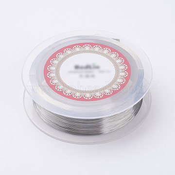 Steel Wire, Silver Color Plated, 0.15mm, about 1640.41 Feet(500m)/roll(TWIR-E001-0.15mm)
