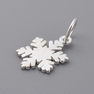 925 Sterling Silver Charms(X-STER-T002-290S)-2