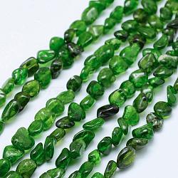 "Brins de perles de diopside vert naturel, nuggets, 5~11x5~7mm, trou: 1mm; 15.3""~15.7"" (39~40cm)(G-K203-53)"