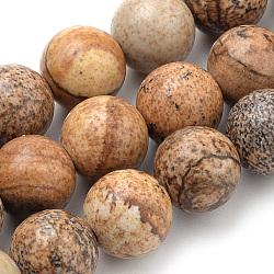 image Naturel jaspe perles brins, arrondir, 8 mm, trou: 1 mm; environ 46 perle / brin, 15.7(X-G-S259-27-8mm)