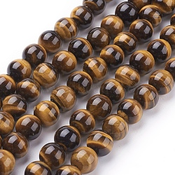 Natural Tiger Eye Beads Strands, Grade A, Dyed, Round, Goldenrod, 8mm