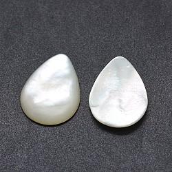 Cabochons en coquille, goutte , blanc, 19.5~20x14.5~15x3mm(SSHEL-E567-24G)