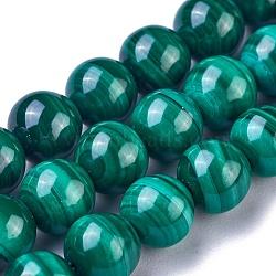Chapelets de perles en malachite naturelle, rond, 6mm, trou: 0.7mm; environ 70~72 pcs/chapelet, 115.7'' (39.5~40 cm)(G-G779-04B)