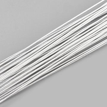 Iron Wire, WhiteSmoke, 20 Gauge, 0.8mm, about 2.62 Feet(80cm)/strand; 50strand/bag(MW-S002-01F-0.8mm)