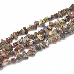 perles de jaspe en peau de léopard naturel, puce, 3~11x3~5x1~4 mm, trou: 1 mm; environ 380~400 perle / brin, 33(G-S315-04)