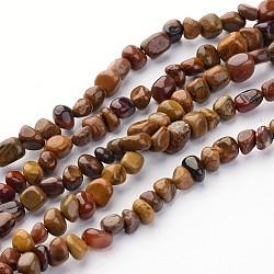 """Bracelets élastiques perles yeux de tigre naturel, 3~5 mm; trou: 0.8 mm; 15.5"""", 82 pcs / chapelet(G365-37)"""
