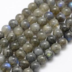 Natural Labradorite Beads Strands, Grade A+, Round, 8mm, Hole: 1mm; about 49pcs/strand, 15.3''(39cm)