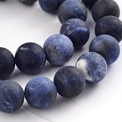 """Chapelets de perles rondes en sodalite mate naturelle, 8mm, trou: 1mm; environ 48 pcs/chapelet, 15.1""""(X-G-F231-01-8mm)"""