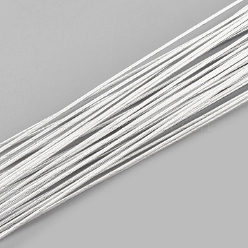 Iron Wire, WhiteSmoke, 20 Gauge, 0.8mm, about 1.96 Feet(60cm)/strand; 50strand/bag(MW-S002-02F-0.8mm)