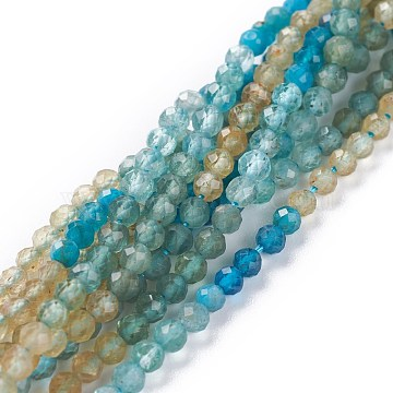 Natural Apatite Beads Strands, Round, Faceted, 3mm, Hole: 0.7mm, about 123pcs/strand, 15.35inches(39cm)(G-A026-A11-3mm)