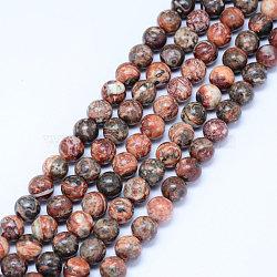 perles de jaspe en peau de léopard naturel, arrondir, 6.5 mm, trou: 1 mm; environ 61 perle / brin, 15.5 (39.5 cm)(X-G-J358-05-6mm)