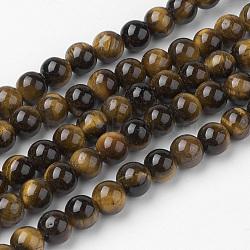 Jaunes brins naturels de perles oeil de tigre, rond, grade AB +, 6~6.5mm, trou: 1mm; environ 60 pcs/chapelet, 14.9'' (38 cm)(G-G735-65-6mm-AB+)
