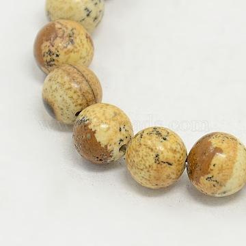 Picture Jasper Round Beads Strands, Camel, 8mm, Hole: 0.8mm; about 48pcs/strand(X-G-GSR8mmC016)