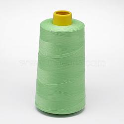 100% polyester filé fil à coudre de fibres, palegreen, 0.1 mm; sur 5000 mètres / rouleau(OCOR-O004-A79)