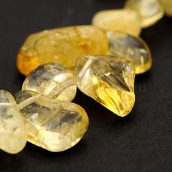 """Природный цитрин шарик нити, самородки, 10~22x5~14x4~11 мм, отверстия: 1 mm; о 15.7""""(G-J278-23)"""