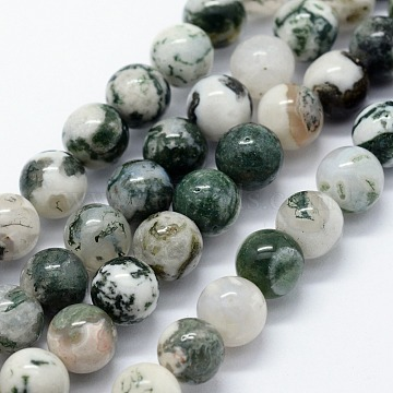 Natural Tree Agate Beads Strands, Round, 6mm, Hole: 1.2mm; about 63pcs/strand, 14.76 inches(37.5cm)(X-G-I199-03-6mm)